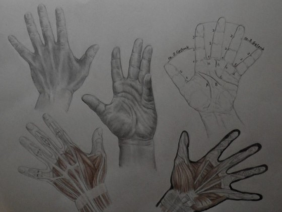 Handstudie Blatt 1