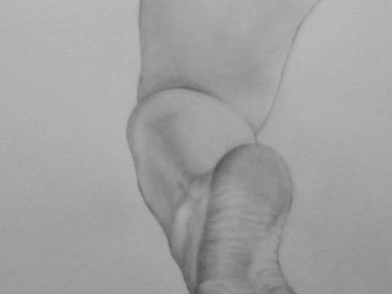 Fußstudie 3