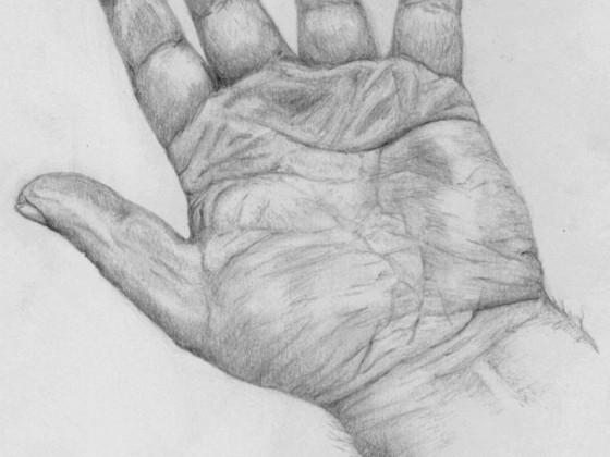 Hand 01-2014