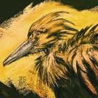 Schattenvogel
