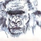Tier Nr: 8