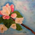 Kirschblüte 4.2.