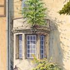 Die Balkonbirke
